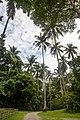 Pulau Ubin - panoramio.jpg