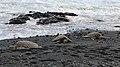 Punalu'u Beach, Pahala (504453) (23227810553).jpg