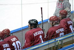 Putin Sochi ice hockey 4 jan 2014 - 02.jpg