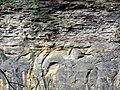 Quartzose sandstones (Byer Sandstone over Black Hand Sandstone, Lower Mississippian; old quarry at Black Hand Gorge, Ohio, USA) 1 (30773711190).jpg