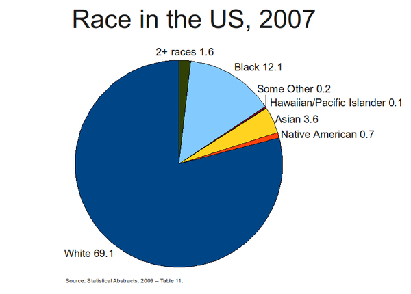 Racial makeup of the us 2007.png