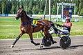 Racing Boy and Tapio Perttunen.jpg