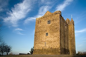 Early Irish law - Redwood Castle, County Tipperary, although built by the Normans, was later occupied by the MacEgan juristic family and served as a school of Irish law under them