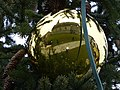 Reflection in a christmas ball.JPG