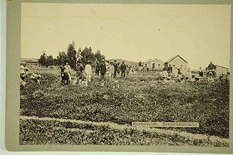 Rehovot - Rehovot in 1893