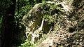 Rezerwat Biesak - Białogon, resztki wyrobiska kamieniołomu - panoramio.jpg