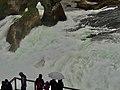Rhine Falls, Zurich (Ank Kumar) 05.jpg