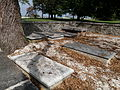 Rich Neck Manor, cemetery (21629010665).jpg