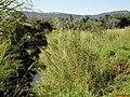 Rio Capanema ou Águas do Morro passando pela SP-345, ao fundo as montanhas da divisa de estado São Paulo-Minas Garais - panoramio.jpg