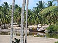 Rio Maragogi, Alagoas, Brasil - panoramio.jpg