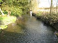 River Loddon at Sheepbridge - geograph.org.uk - 1056058.jpg