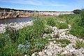 River Shingle - geograph.org.uk - 1367579.jpg