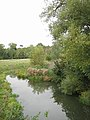 River Stour near Wimpstone - geograph.org.uk - 60884.jpg
