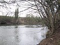 River Teme - geograph.org.uk - 300413.jpg