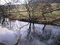 River Wharfe near Appletreewick - geograph.org.uk - 120673.jpg