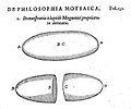 Robert Fludd on magnetism Wellcome L0001519.jpg