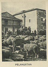 Rollo de Pelahustán.jpg