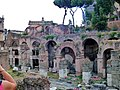 Rom Caesarsvorum fd (7).jpg