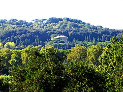 Giardino all'italiana - Wikipedia