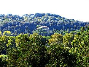 Villa Madama - Viewed from a distance