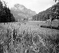 Romania, Transylvania, Lacul Rosu, Hasmas Mountains Fortepan 6065.jpg