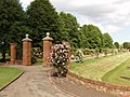 Rose garden by Colchester Castle - geograph.org.uk - 189299.jpg
