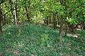 Rotenburg Unterstedt - Hügelgräberfriedhof Hempberg 07 ies.jpg