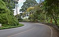 Route 1096 in Chiang Mai Province.jpg