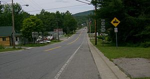 New York State Route 10 - NY 10 overlaps NY 29A passing through Caroga Lake