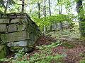 Ruine Hirschstein xy 15.JPG