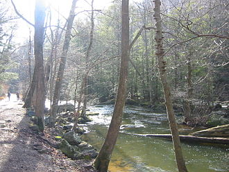Columbia Trail - View from the road that follows the South Branch Raritan River through Ken Lockwood Gorge.