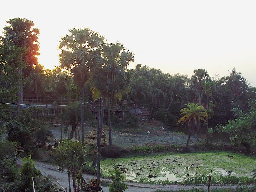 Samta panorama from a house's terrace during sunset