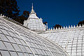 San Francisco Conservatory of Flowers-40.jpg