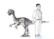 Una vignetta su Sarkozy.