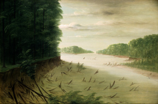 Scene from the Lower Mississippi