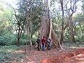 Scenes from Aralam Wildlife Sanctuary (7).jpg