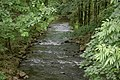 Schirgiswalde - Spree (Kappler Brücke) 02 ies.jpg