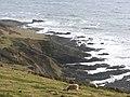 Searush Cove, Noss Mayo - geograph.org.uk - 1730446.jpg