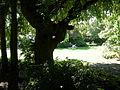 Seattle - Parsons Gardens 02.jpg