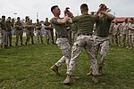 Security Force Marines conduct trilateral training during Lisa Azul 150312-M-XZ244-151.jpg