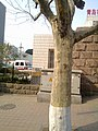 Shibei, Qingdao, Shandong, China - panoramio (106).jpg