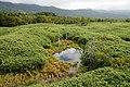 Shiretoko Goko Lakes04s3.jpg