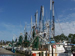 Ocean Springs, Mississippi - Ocean Springs shrimp boats in 2008