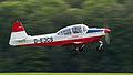 Siat 223 Flamingo D-EJCS OTT 2013 01.jpg