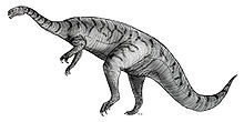 Sketch plateosaurus.jpg