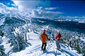 Ski photo - Flickr - USDAgov.jpg