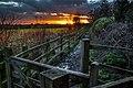 Skidby IMG 9830 - panoramio.jpg