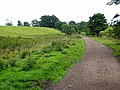 South Tyne Trail at Knarsford - geograph.org.uk - 886409.jpg