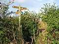 Squeeze Through The Hedge - geograph.org.uk - 266524.jpg