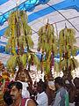 Sree Muthappan Kalasam dance.JPG
